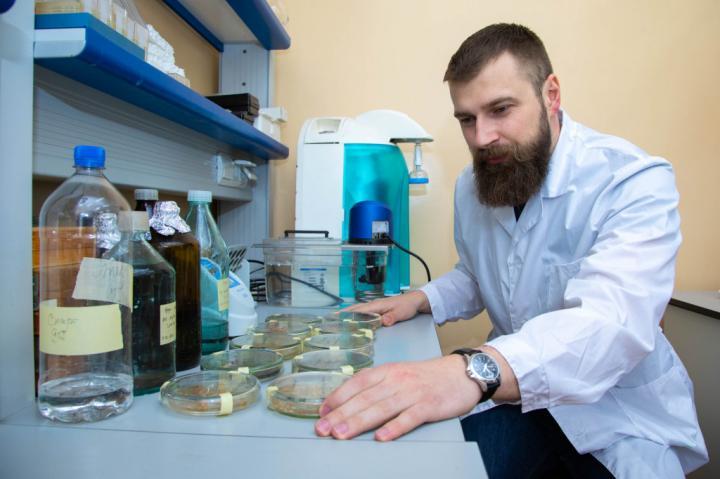 IKBFU Scientist