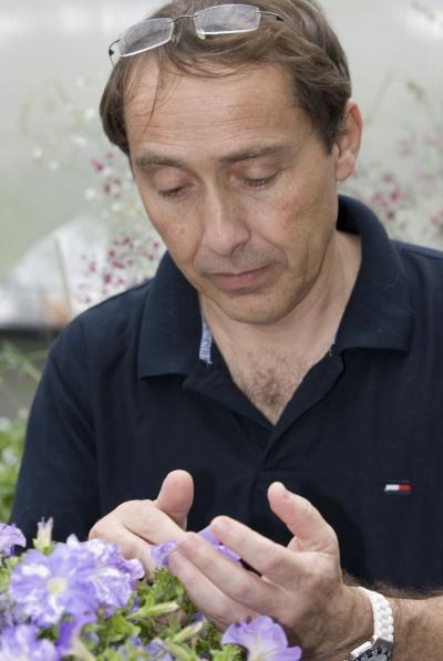 Prof. Alexander Vainstein