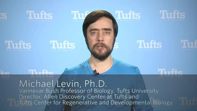 Professor Michael Levin, Tufts University
