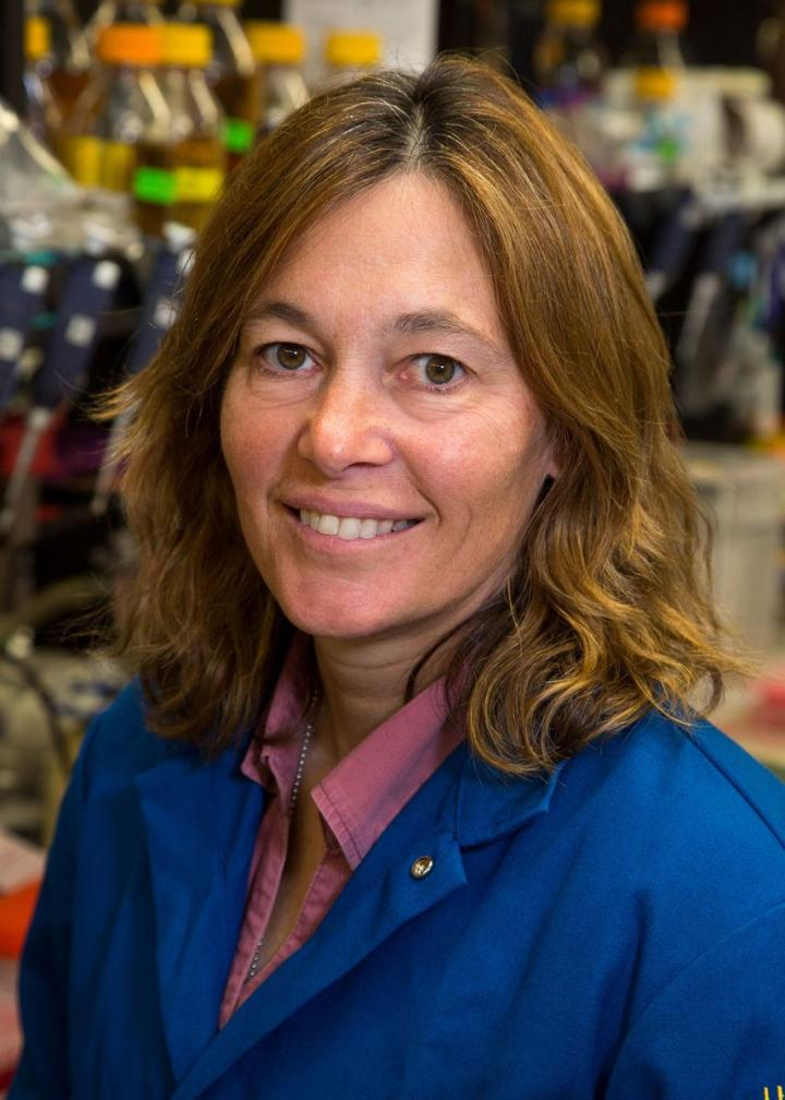 Carla Koehler, University of California - Los Angeles