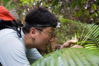 Taxon Expeditions Participant J.P. Lim Collecting Snails