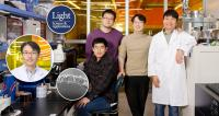 Professor Kyoung Jin Choi and his Research Team