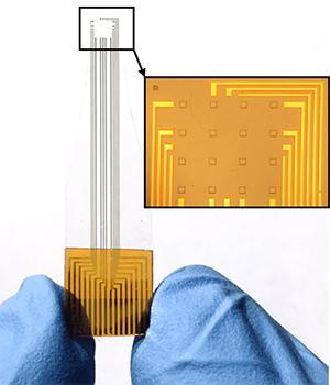 Microelectrode Array
