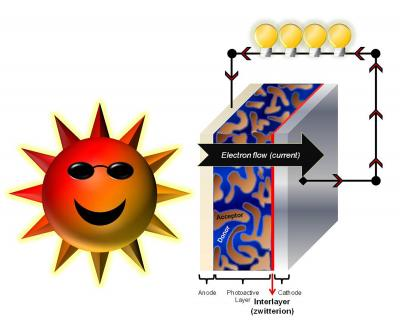 A Zwitterionic Fullerene Layer Improves the Efficiency of Organic Solar Cells