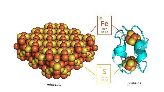 Protein Nanomachines