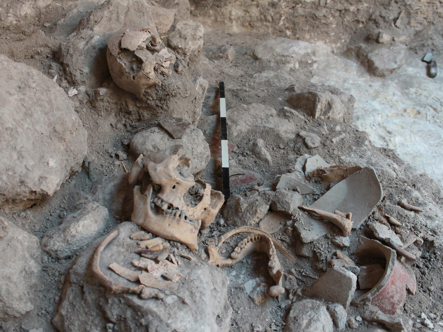 Mass Grave of Uxul during the Excavations in 2013