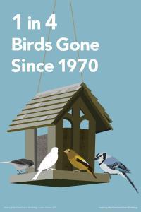 1 in 4 Birds Gone