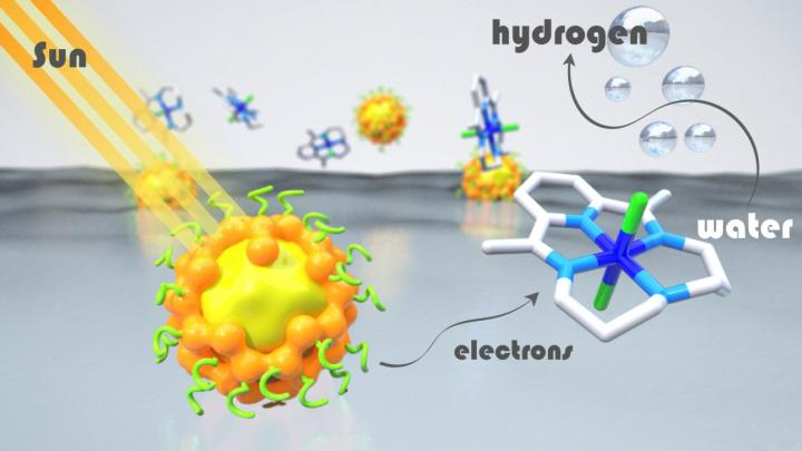 Artificial Photosynthesis Systems Chromophores