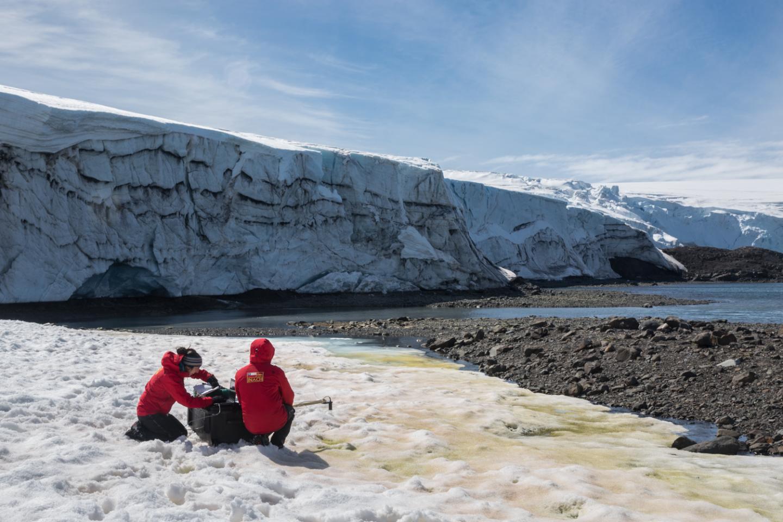 Collins Glacier on King George Island