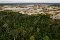 Mining ponds show where the forest once stood in the La Pampa region of Madre de Dios, Peru.