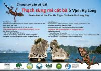 Protection of the Cat Ba Tiger Gecko in Ha Long Bay