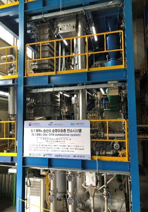 1. Oxy-Circulating Fluidized Bed Combustion system