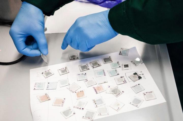 Self-Assembling Monolayers Developed at KTU Laboratories
