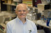Dr. Anton Wellstein, Georgetown University