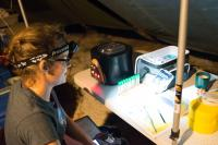 Sea Turtle Field Laboratory