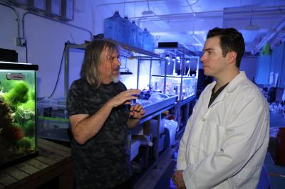 SDSU Researchers Found Compounds in Common Foods Can Sculpt the Gut Microbiome
