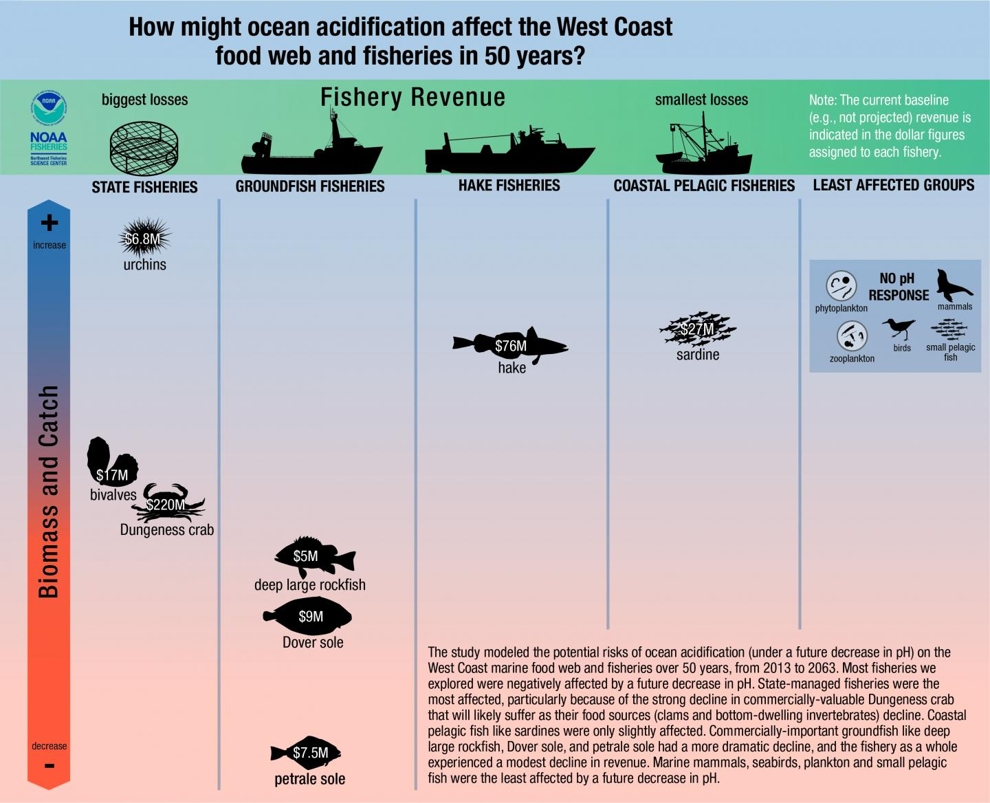 How Will Ocean Acidification Affect Fisheries?