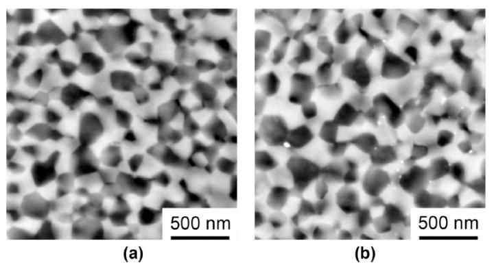 FESEM of 3 at.% Ho3+:Y2O3-MgO composite ceramics