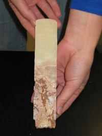 Slice of Stalagmite Core