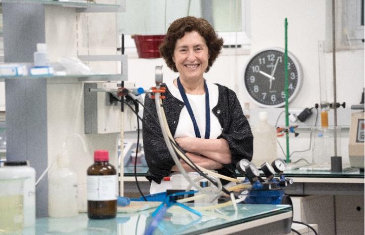 Margarita Herranz, University of the Basque Country