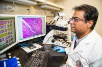 New Therapeutic Target for Spinal Muscular Atrophy