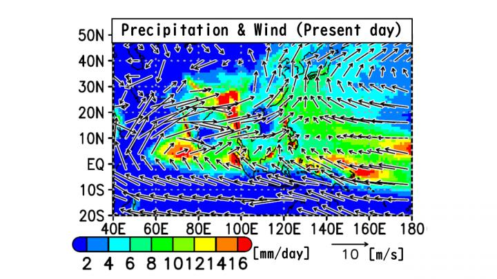 Summer Rainfall and Low-Level Winds (Present, NICAM)