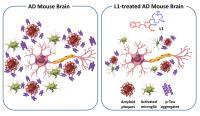 Alzheimer's Compound, L1
