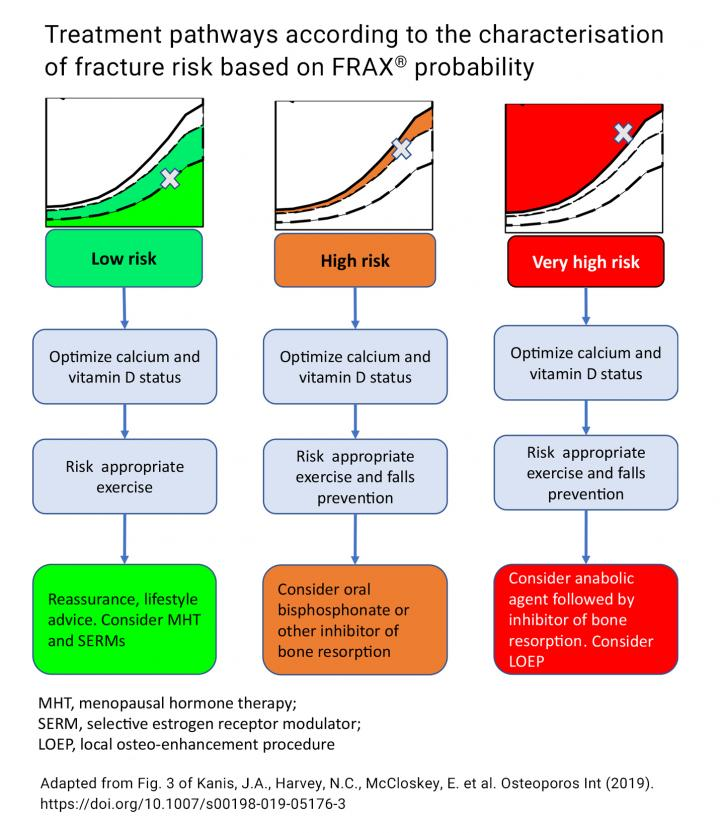 Treatment Pathways According to the Characterisation of Fracture Risk Based on FRAX® Probability