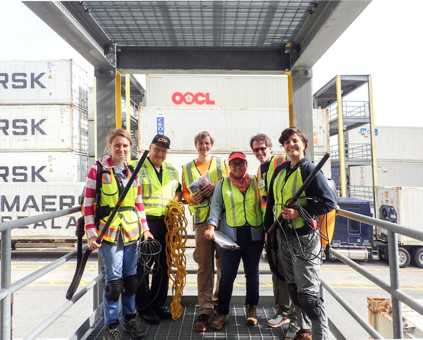 Scientists inventory nonnative plant seeds on incoming US shipping containers