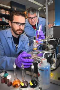 Scientists Working with Catalyst