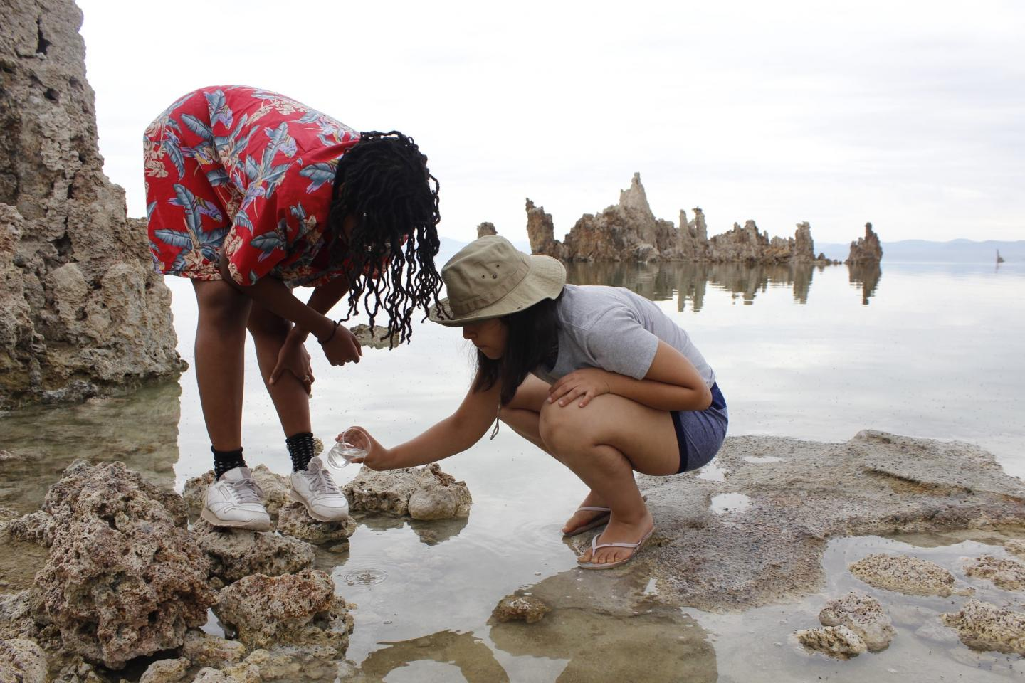 Field Courses Boost Student Success, Support STEM Diversity Efforts, Study Reveals