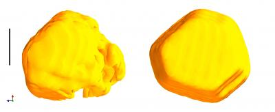 New images of gold nanocrystals