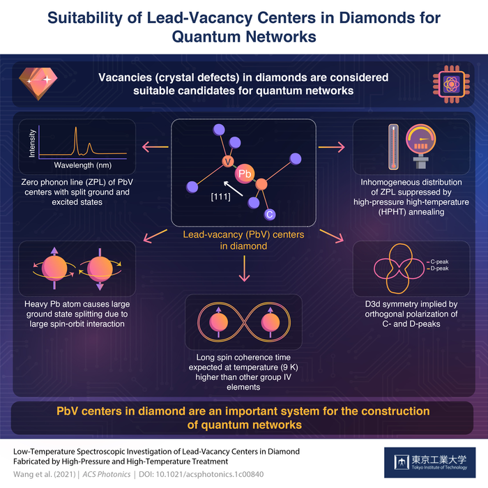 Suitability of Lead-Vacancy Centers in Diamonds for Quantum Networks