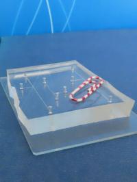 Microfluidic Chip