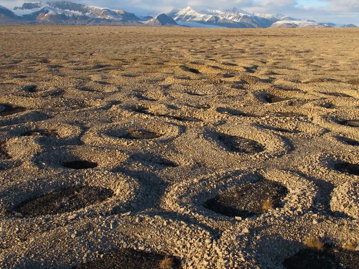 Svalbard Circles
