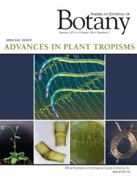 <i>American Journal of Botany</i> Cover of January 2013 Special Issue: Advances in Plant Tropisms