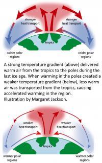Tropical-Polar Heat Transport
