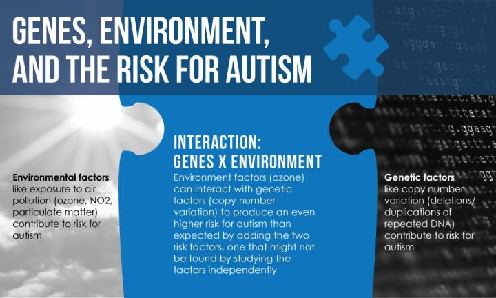 Genes, Ozone, and Autism: Increased Risk for Autism when Genetic Variation and Air Pollution Meet
