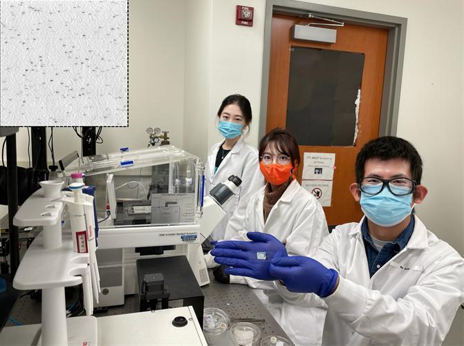 Holonyak Lab COVID Test