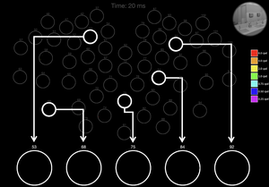 Video of Neural Code Over Time