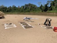 Paleontologists Sediment