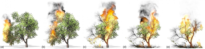 New Computational Method for Burning Trees