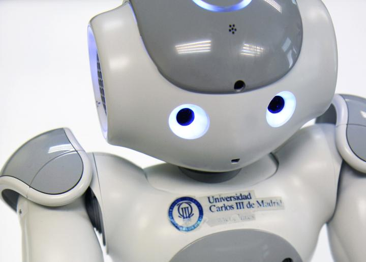 Developing a Robotic Therapist for Children