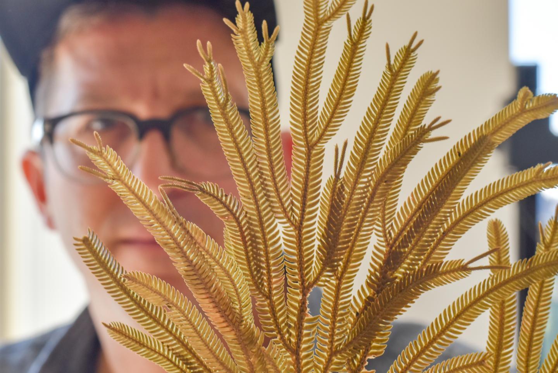 Plant biologist Michael Sundue