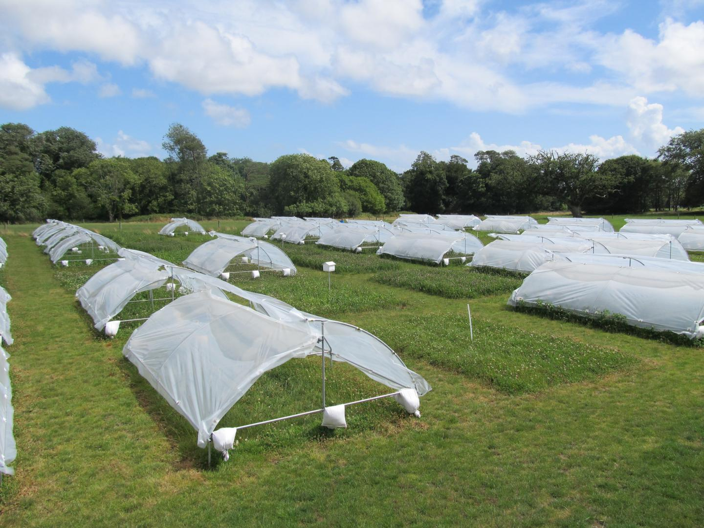 Drought Shelters