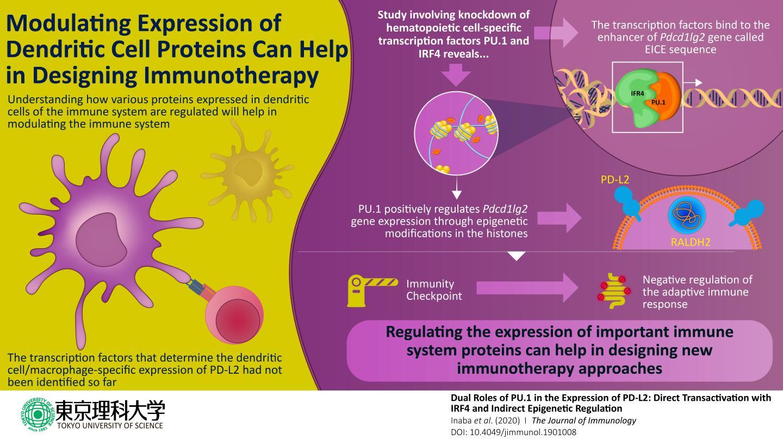 Immune Checkpoint Protein