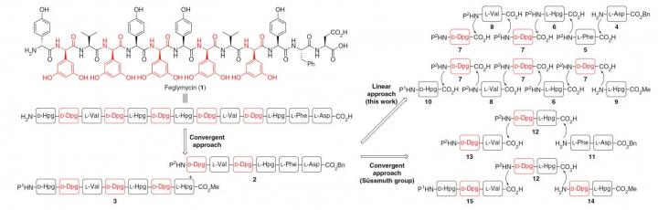 Comparison of Synthetic Strategies toward the Total Synthesis of Feglymycin