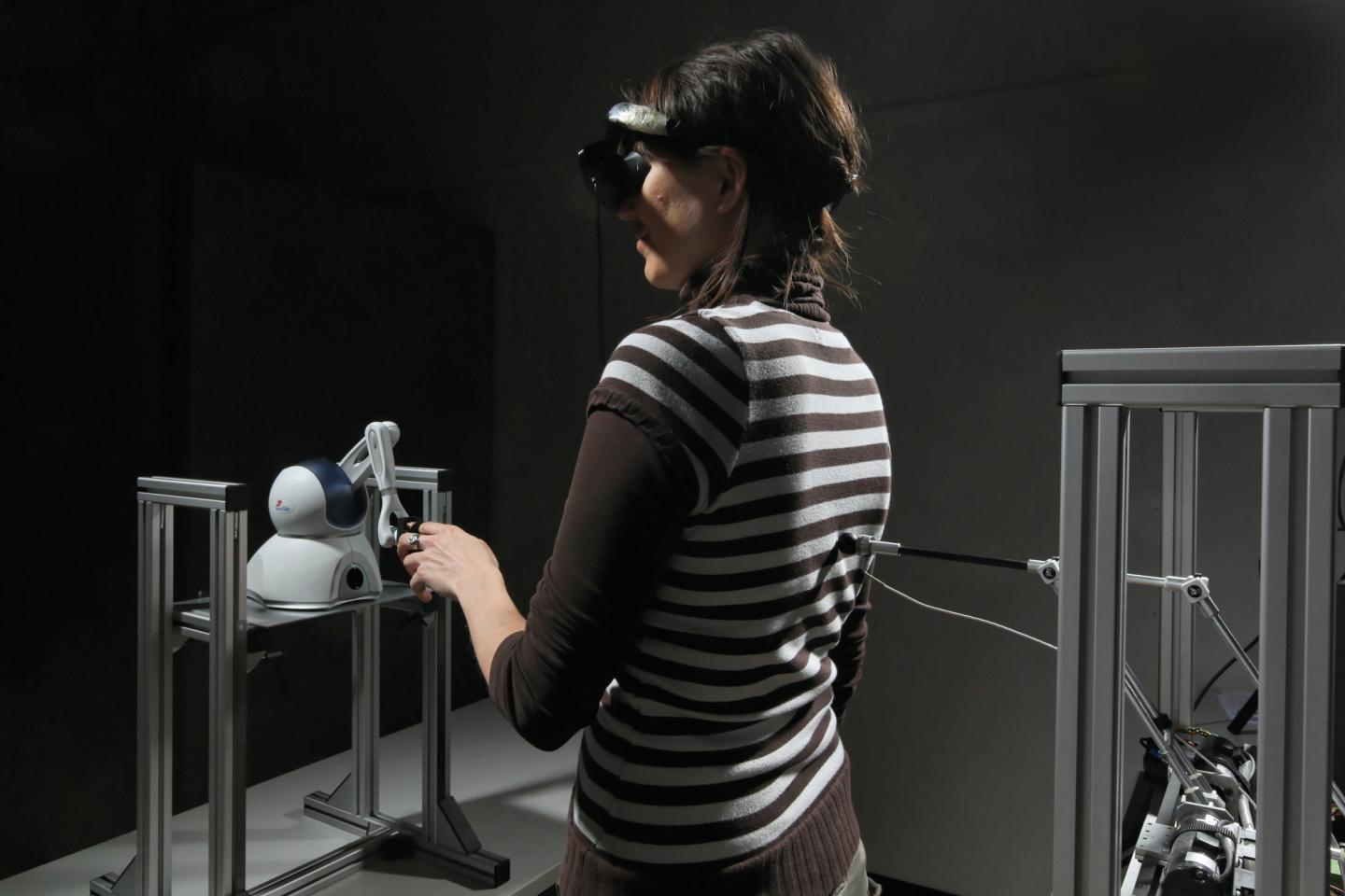 Experiencing the Ghost Illusion in the Lab