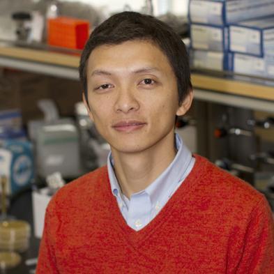 ASU Associate Professor Xaio Wang