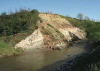 Prehistoric Nesting Site